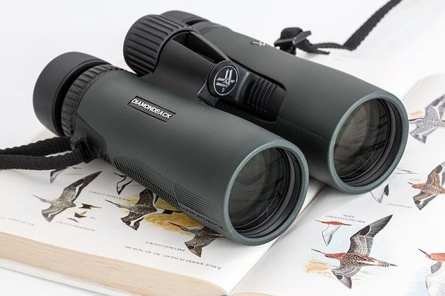 prismáticos para ver pájaros-