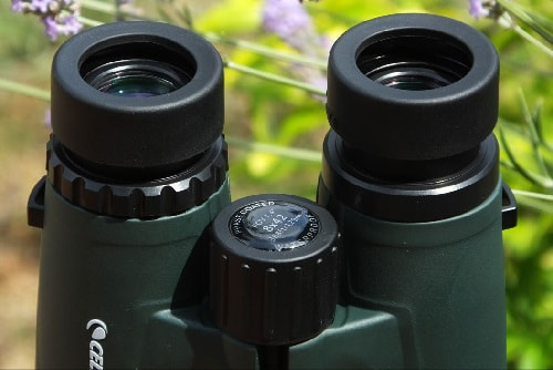 Celestron Nature DX 8x42 enfoque