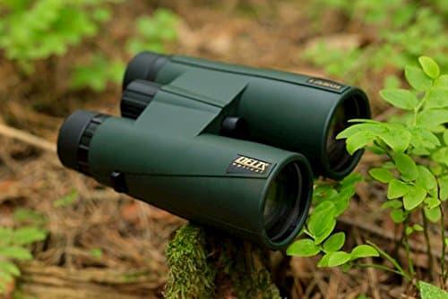 binoculares forest ii 500x334