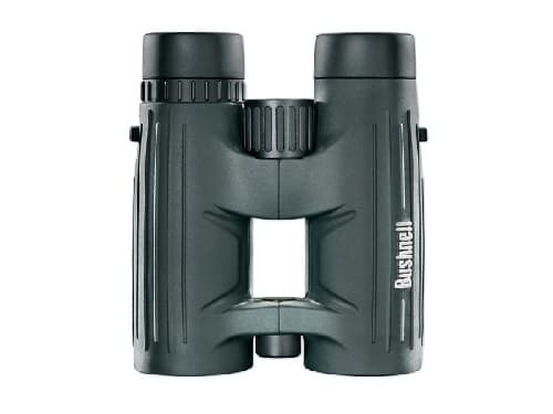 bushnell excrusion hd 10x42 vertical