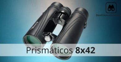 prismáticos 8x42